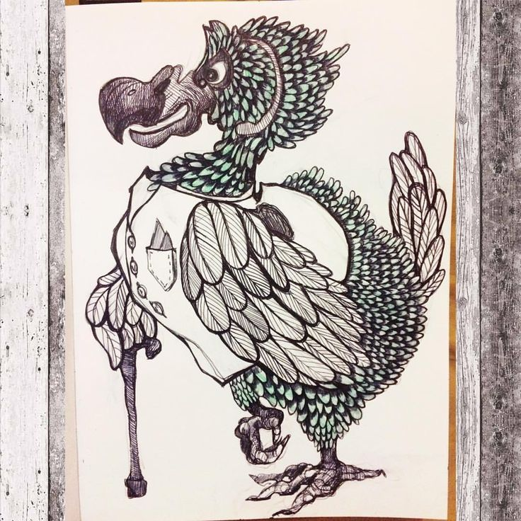 Птица Додо. Иллюстрация, персонаж. #арт #додо #птица #рисунок #графика #иллюстрация #алисавстранечудес #art #graphic #sketch #sketchbook #bird #illustration #tattoo #idea