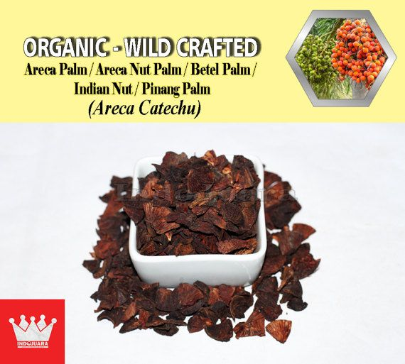 Stroke Recovery, Anti-cavity, Schizophrenia, Dry Mouth Relief, Prevents Anemia, Beneficial for Brain, Stomach Worms, diabetes, Dysentery, Cellular Degeneration, hypertension or blood pressure, Euphoria, Nausea, Stomach Problems, Excess Heat, Anti-depressant, Immunomodulatory properties, Energy Booster, Tooth Decay, etc #DriedHerbs #HerbalRemedies #HerbalMedicine