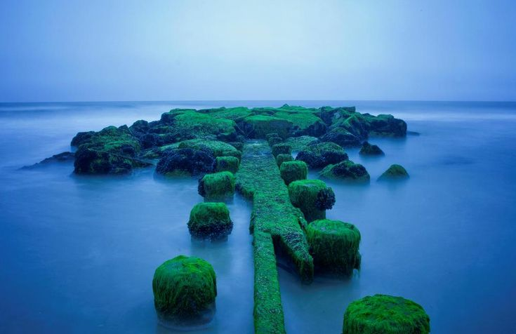 New Jersey, yup, New Jersey Enchanting Emerald Islands