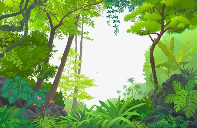 Cartoon Forest Cartoon Clipart Forest Trees Png Transparent Clipart Image And Psd File For Free Download Jungle Images Jungle Pictures Jungle Mural