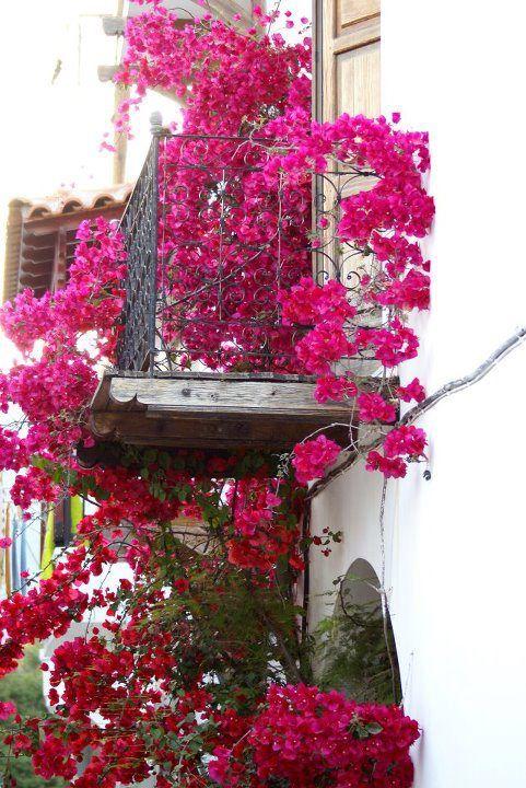 Skiathos,Greece