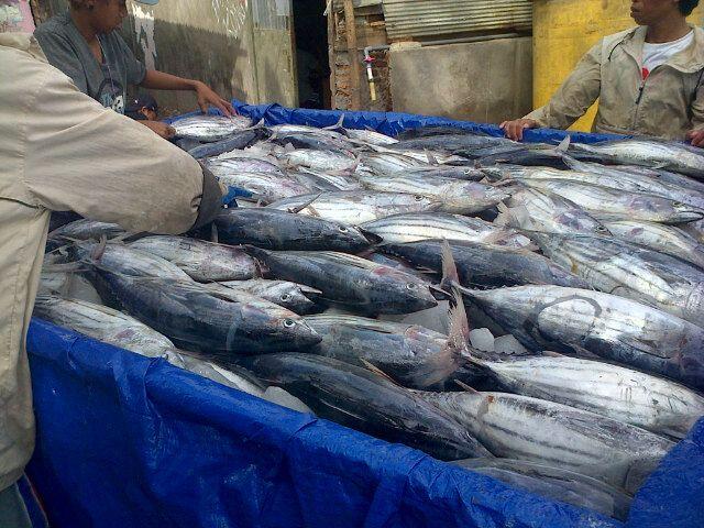 Pelabuhan Paotere Makassar di Makassar
