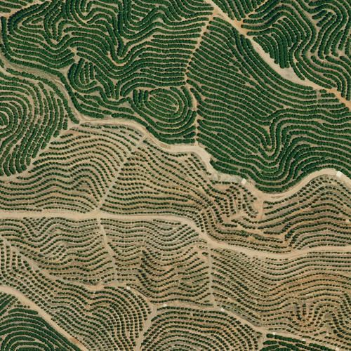 Google Earth Screenshots Reveal Our Planet's Beautiful, Pattern-Like Designs | Co.Design | business + design