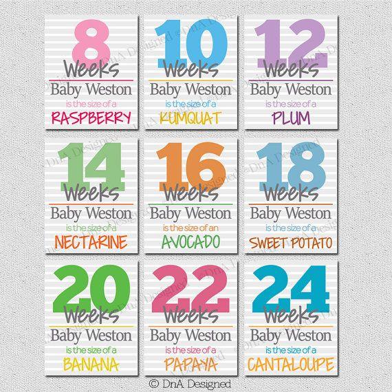 Bi Weekly Pregnancy Weeks - Stripes - Photo Prop - Digital - Baby Announcement - DIY - {7PRS} by DnADesigned