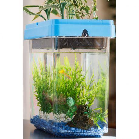 Aquarium potager OZARIUM - Fabriqué en France - Un aquarium sans entretien, design, naturel, écolo et éducatif qui vous permet de cultiver vos propres légumes, fruits et aromates même en appartement et de façon naturelle.