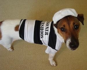 Convict Zeke