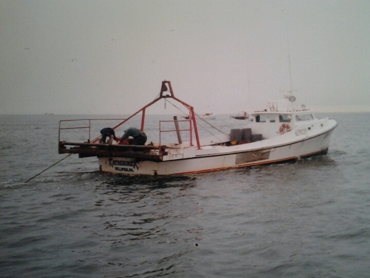 221 best images about Chesapeake workboat on Pinterest   The boat, Virginia and Boats