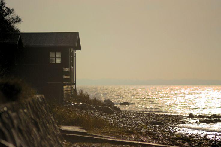 Morning light at Knold, Dyreborg