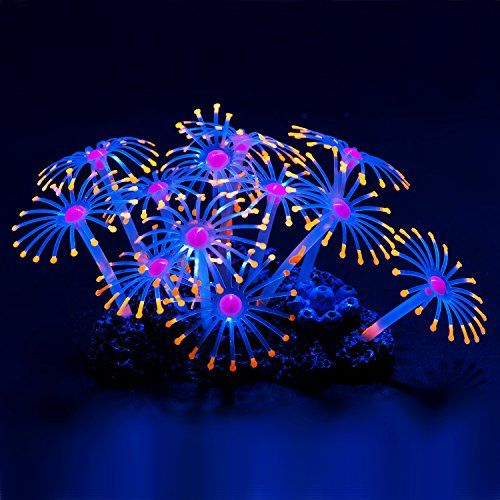 Uniclife Glowing Effect Artificial Coral Plant for Fish Tank, Decorative Aquarium Ornament, Orange – PET SUPPLIES