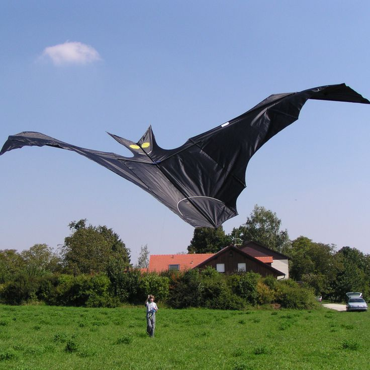 Drak Flapping Bat