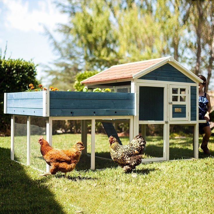 The Advantek Rooftop Garden Chicken Coop has all you need for your feathered friends. This beautiful piece is a garden-hutch mix that provides comfortable livin #Gardens
