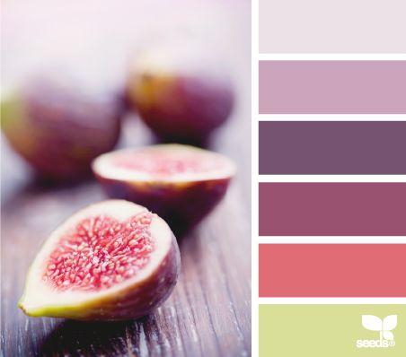 inspiración paleta colores