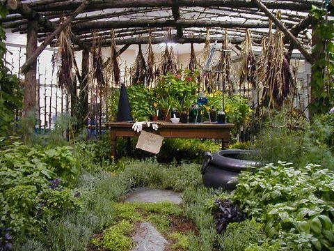 A Witch's Garden -