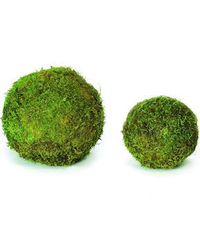 Decorative Moss Balls Captivating 21 Best Ball Ornaments  Moss Images On Pinterest  Christmas Design Decoration