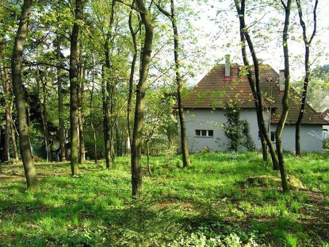 Dědečkova zahrada