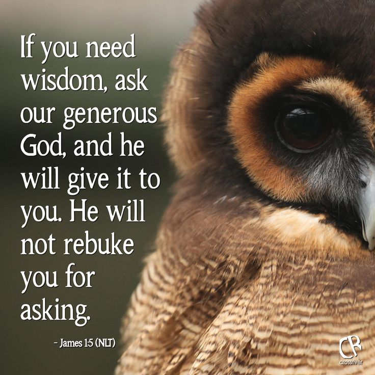 If You Need Wisdom, Ask Our Generous God, And He Will Give