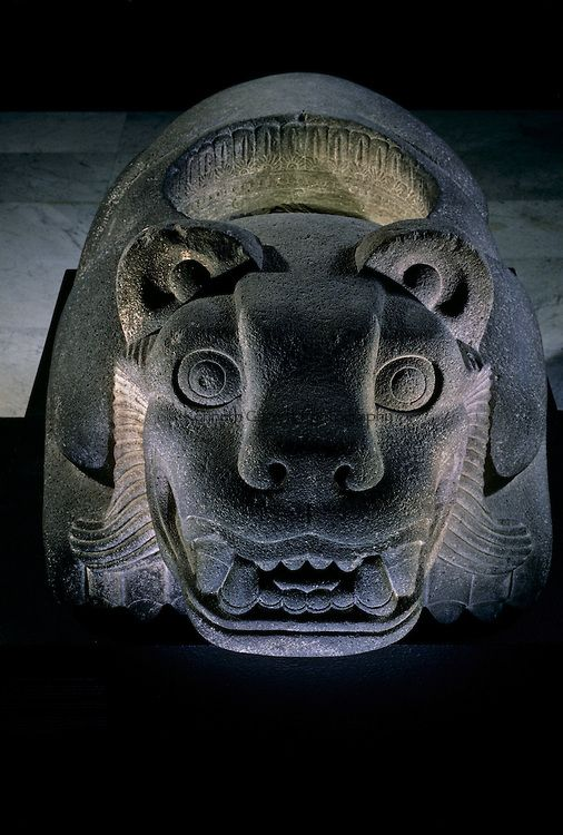 Jaguar shaped receptacle for hearts of sacrifice victims, Aztec, Mexico, Templo Mayor.