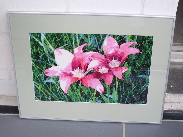 Three Tulips, 2009