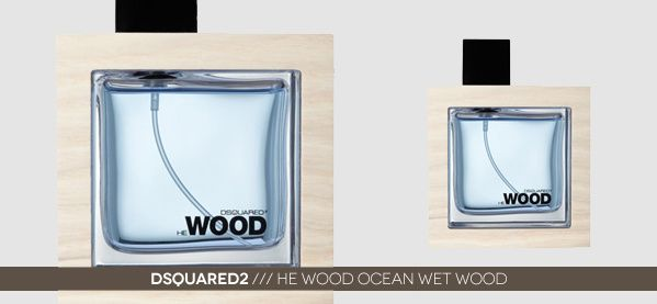 Dsquared2 He Wood Ocean Wet Wood Mens Cologne