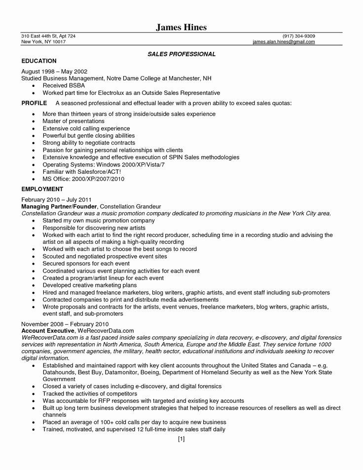 50 Best Of Best Buy Sales associate Resume in 2020 (With