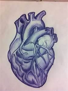 Anatomical Heart Tattoo By