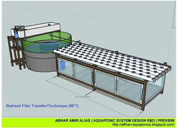 1000 Ideas About Aquaponics Greenhouse On Pinterest