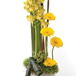 Birthday flowers and gifts: Contemporary Class