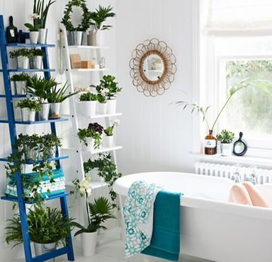 Display of plants on white and blue ladder in the bathroom. Put two ladders together to make an impact.