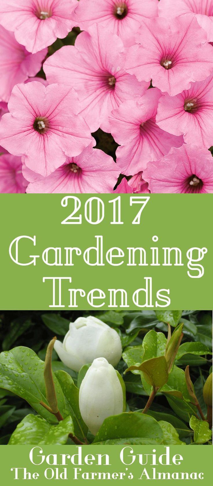 Best Garden Guide Images On Pinterest Garden Guide