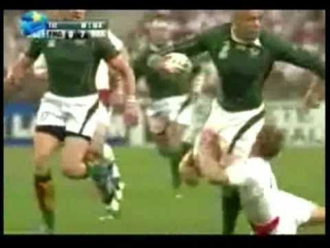 Cheetah vs. Springbok - Leon Schuster song