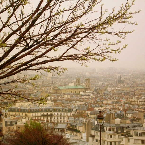 "@dimval's photo: ""#view from #Montmartre 