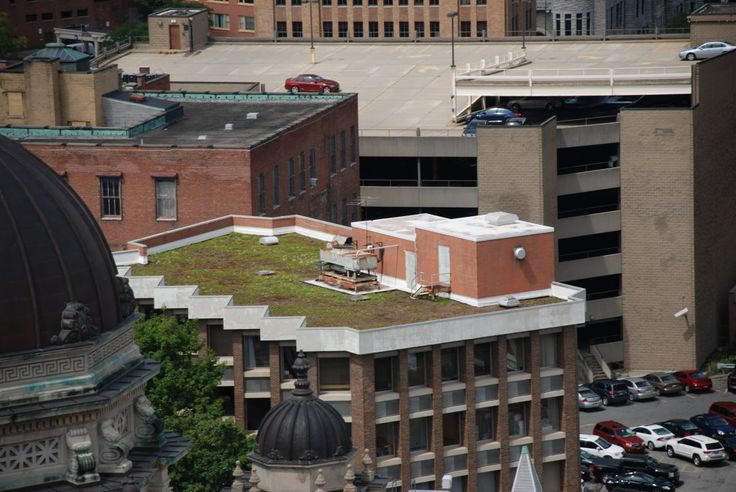 Syracuse, NY - The green roof project at the Monroe Building converted approximately 5,200 square feet of roof top surface to a vegetative roof system comprised of a sedum and chive mixture.  This roof is expected to capture at least one inch of precipitation in a given storm or sequence of storms, preventing it from entering the sewer. - green infrastructure - green roof - save the rain