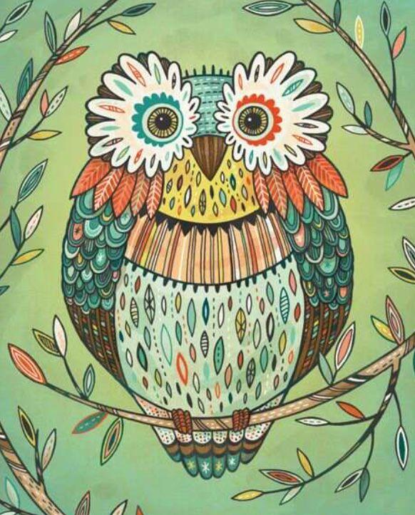 Цветные картинки с совами