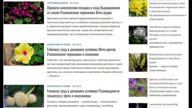 что посадить на даче что посадить на даче  http://ift.tt/2wM9CXQ  что посадить в саду красивые цветы декоративные кустарники домашние цветы декоративные растения кустарники для живой изгороди садовые цветы садовые растения  http://ift.tt/2wM9CXQ https://youtu.be/UA0sNkgw4qk