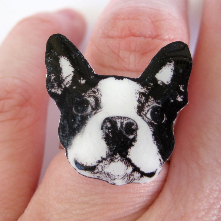 Boston Terrier Ring - Adjustable : Random Cool Stuff : Pinterest : Boston, Terriers and Boston ...