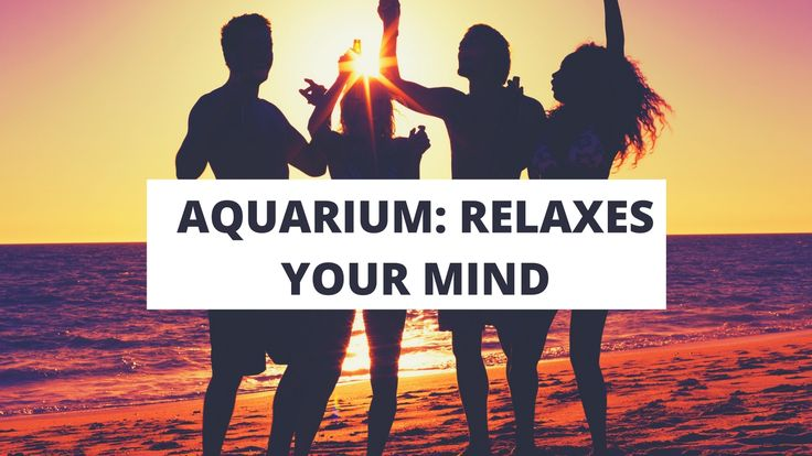 RENTALS FROM RENT AQUARIUM Relaxes your mind, Boosts office morale, Alleviates anxiety #RentAquarium, #RentanAquarium, #AquariumLondon, #LondonAquarium, #London