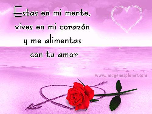 Imagenes De Rosas Y Corazones Con Frases De Amor Love Palavras
