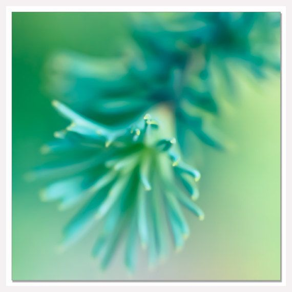 Teal blue tree wall photograph blue green bathroom decor for Blue and green bathroom accessories