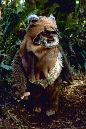 Wicket!!! What can I say, I LOVE Star Wars! So much so that I named my kitty after this adorable creature. ^_^