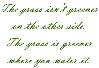 Water your grass.: Sayings, Inspiration, Quotes, Truth, Thought, So True, Greener Grass, Wise Words, Green Grass