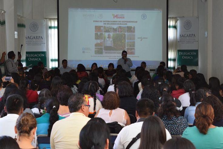 Revaloriza Sagarpa la labor de la mujer rural en Oaxaca