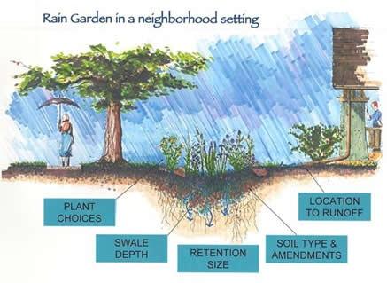 35 best Rain garden images on Pinterest Rain garden Garden