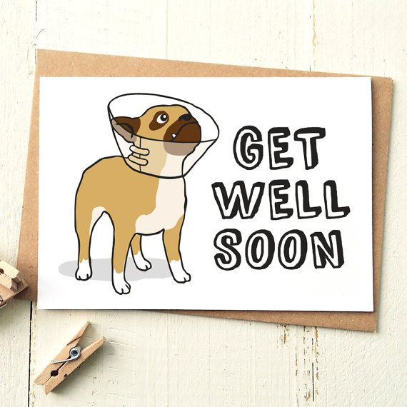 Funny Get Well Card  Get Well Soon Card  Dog by FinchandtheFallow