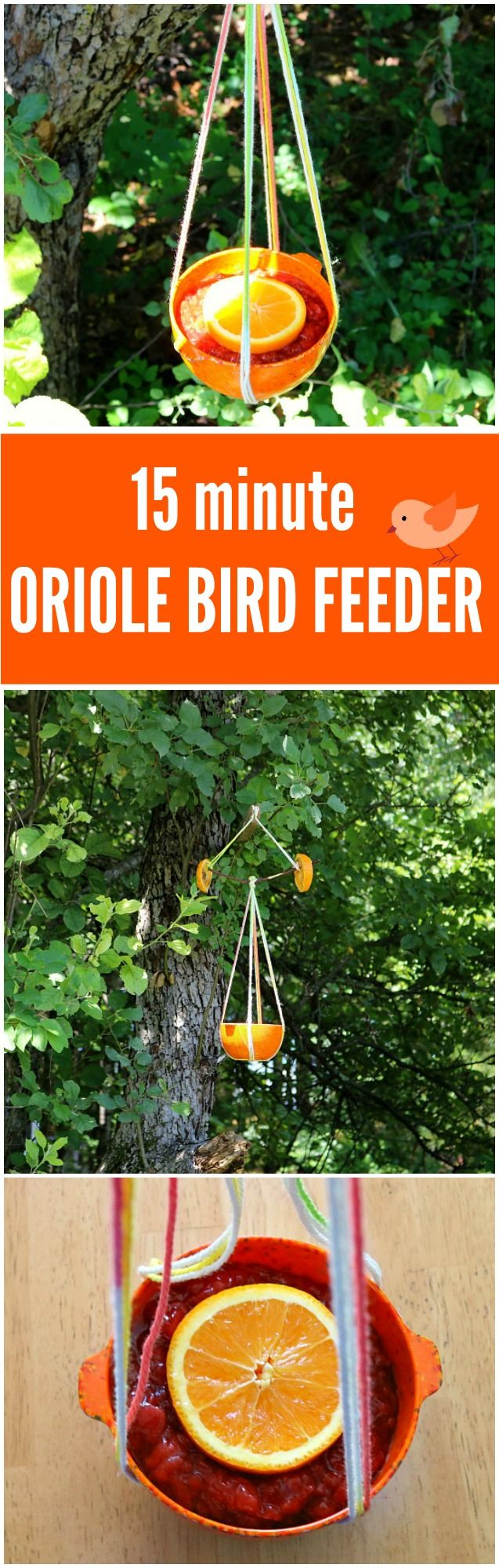 This Super Simple DIY Oriole Bird Feeder takes only about 15 minutes to make and is sure to attract all kinds of Orioles and pretty songbirds to your yard!