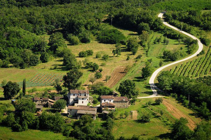 Motovun countryside! :)