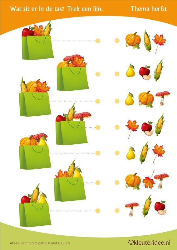 Wat zit er in de tas , thema herfst voor kleuters, juf Petra van kleuteridee, visuele discriminatie, Preschool autumn bag, free printable.