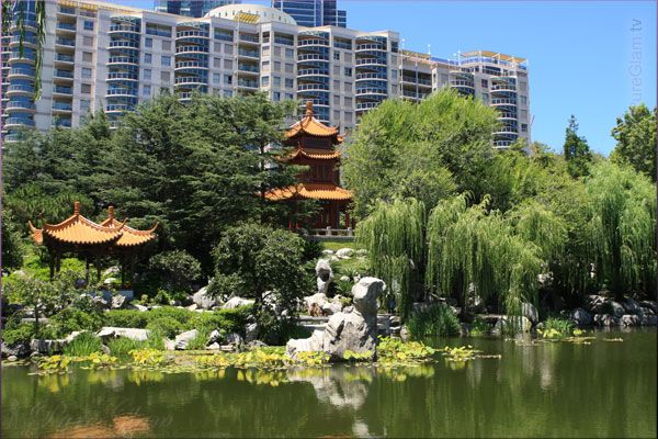 Skyline and beautiful Chinese Garden of Friendship – moments of Asia - Sydney, New South Wales, Australia