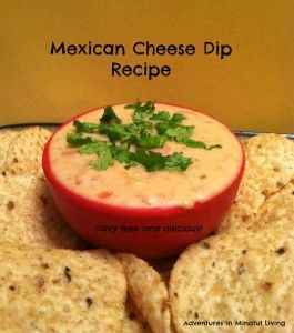 Mexican Cheese dip recipe @ Adventures in Mindful Living
