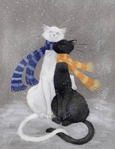 Cats. White & black. Snow.