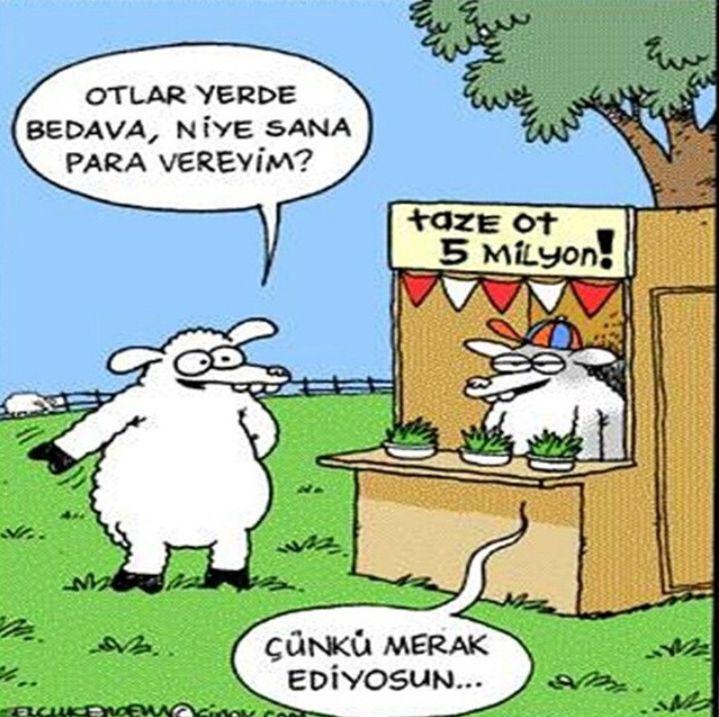 Ot satan koyun... #komik #karikatür #karikatur  #enkomikkarikatür #enkomikkarikatur #karikaturcu #karikatürcü #funny #comics #karikaturdunyasi #karikaturvemizah #mizah #koyun #sheep